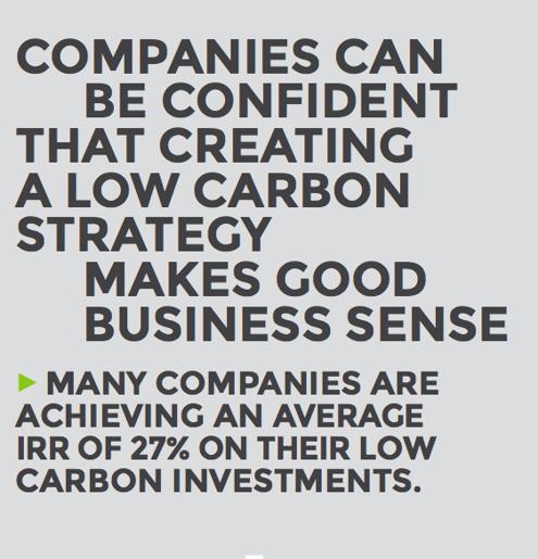 Low Carbon Business Sense