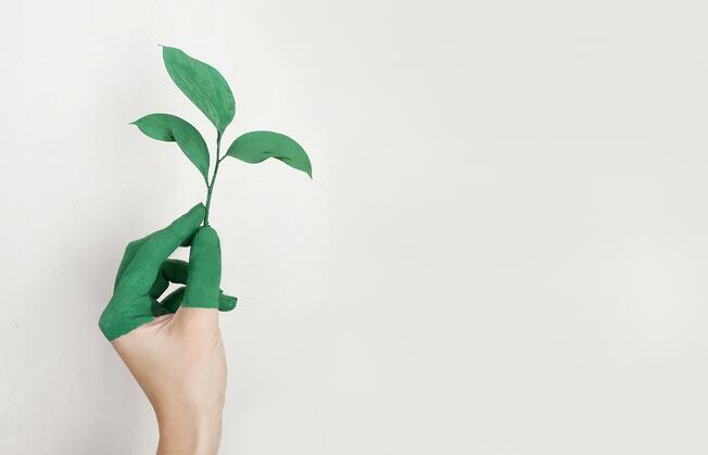 Sustainability Hand